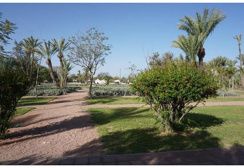 pullman-marrakech11