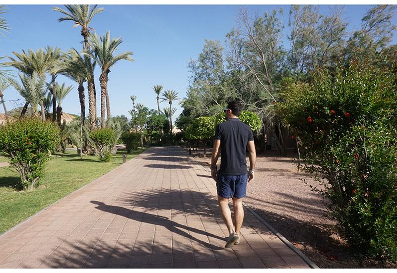 pullman-marrakech9